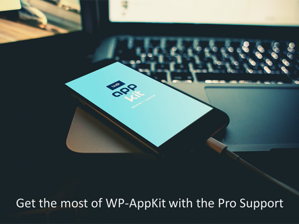 Pro Support Featured Image